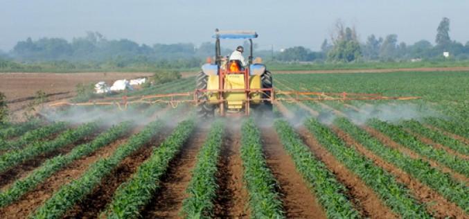 Guía para inversores sobre los riesgos de la cadena de suministro agrícola