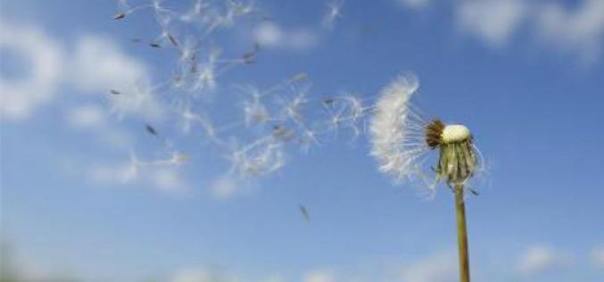 Autoridades promueven 'Respira', nuevo índice nacional de calidad del aire