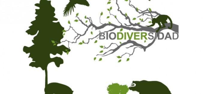 Un 72% de las grandes empresas contempla en su estrategia la conservación de la biodiversidad