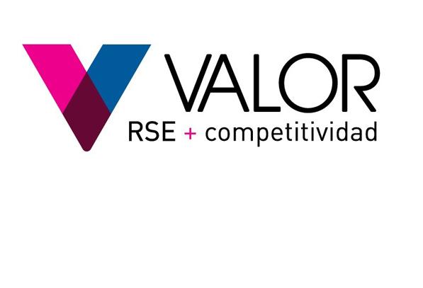valor RSE 541x311