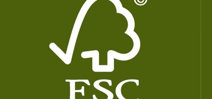 Argentina es el 3er país de la región con más certificados de Cadena de Custodia FSC
