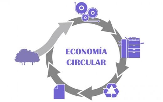 El análisis de ciclo de vida ambiental y social como herramienta clave de la economía circular