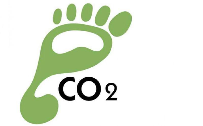 Colombia pieza clave en neutralidad de carbono en Latinomaerica