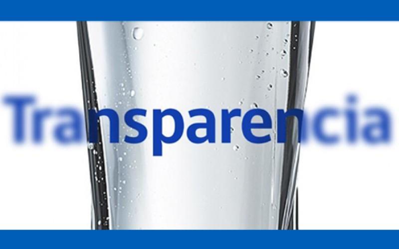 ¿Por qué éstas empresas son líderes en transparencia?