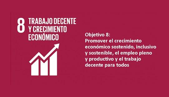 """El ODS 8 """"Trabajo decente y crecimiento económico"""" es inalcanzable para muchos países"""