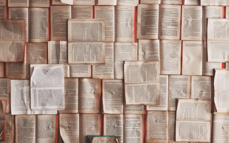 Cinta negra, la novela para todos los interesados en la RSE