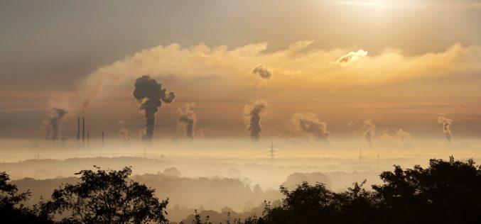"""""""Mercado Global del Carbono"""", proyecto busca posicionar a Chile como país activo en la lucha contra el cambio climático"""