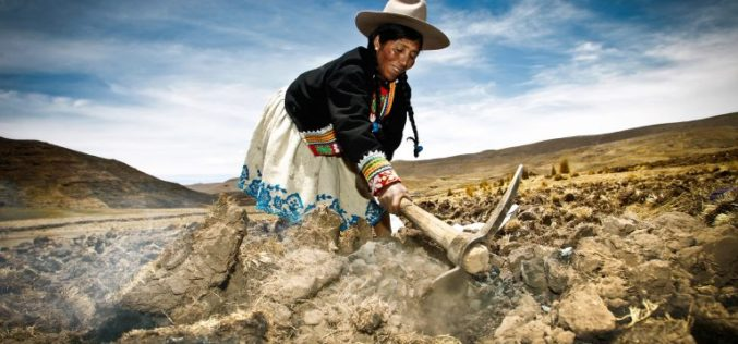 Mujeres contra el cambio climático