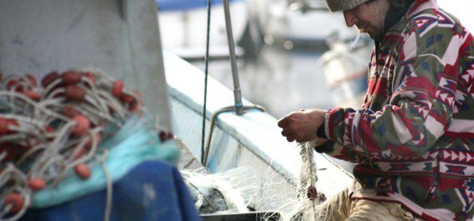 La flota atunera española recibe los primeros certificados AENOR de Pesca Responsable