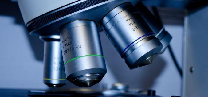 Así está fomentando L'Oréal España la paridad en las carreras de ciencias