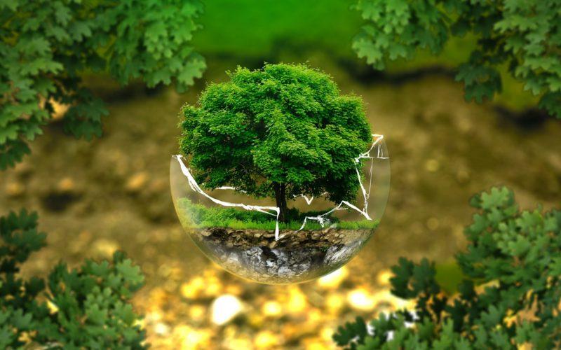 El ecodiseño, imprescindible para reducir el impacto medioambiental de los envases