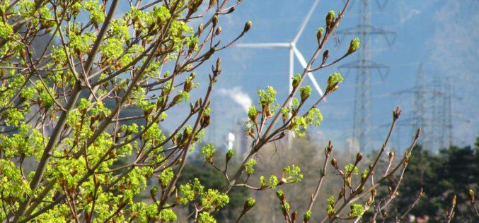 El 93% de las empresas españolas del Pacto Mundial orientan sus esfuerzos al área medioambiental