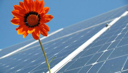Préstamo por USD 200 millones para proyectos verdes en América Latina