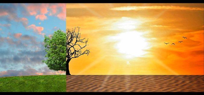 Conoce los estragos que tu salud padece por cambio climático