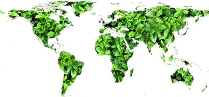 El mundo es más verde que hace 20 años: NASA