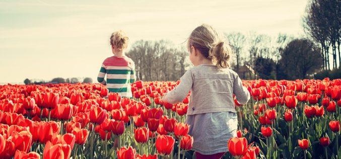 10 niños que están listos para enseñarte responsabilidad social