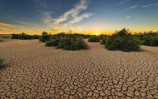 Sudáfrica declara estado de catástrofe natural por sequía