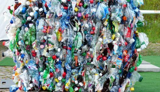 Ingenieros chilenos inventan bolsa hidrosoluble para acabar el plástico