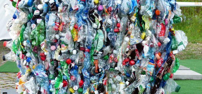 COVID-19 golpea con fuerza a la industria del reciclado en México