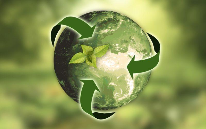 Las empresas responsables con el medioambiente son las más elegidas por los españoles