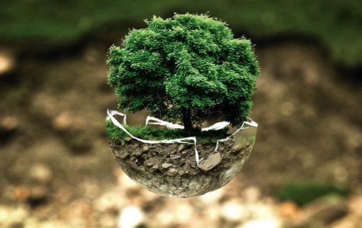 Hasta 160 organizaciones instan a los líderes mundiales para que garanticen DDHH y medio ambiente