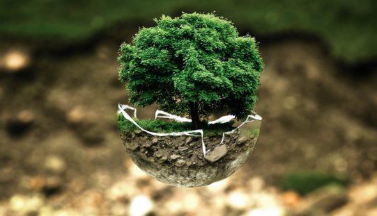 ¿Qué tienen que saber las empresas para cumplir con la nueva Ley de Responsabilidad Ambiental?