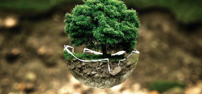 12 empresas españolas van a los Premios Europeos de Medio Ambiente a la Empresa