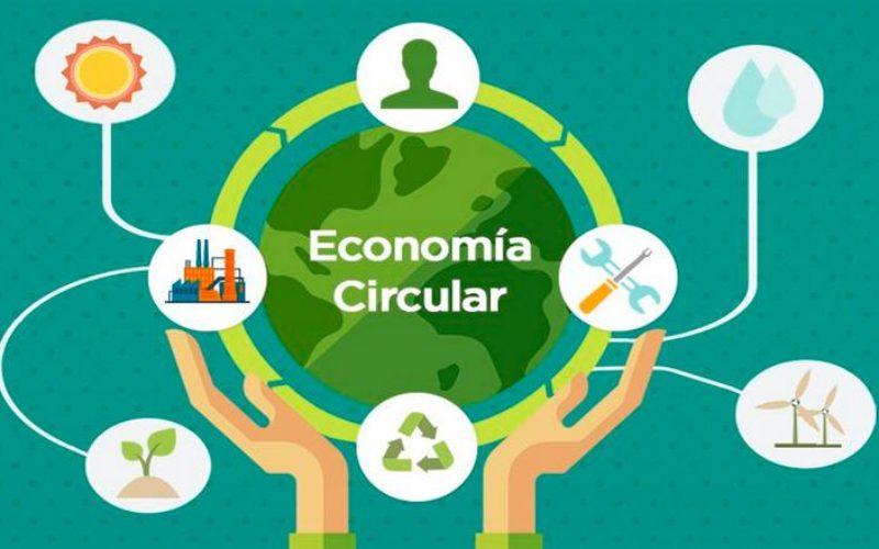 Economía circular: aprende de Sodimac y Mallplaza, empresas miembros de PROhumanaRED