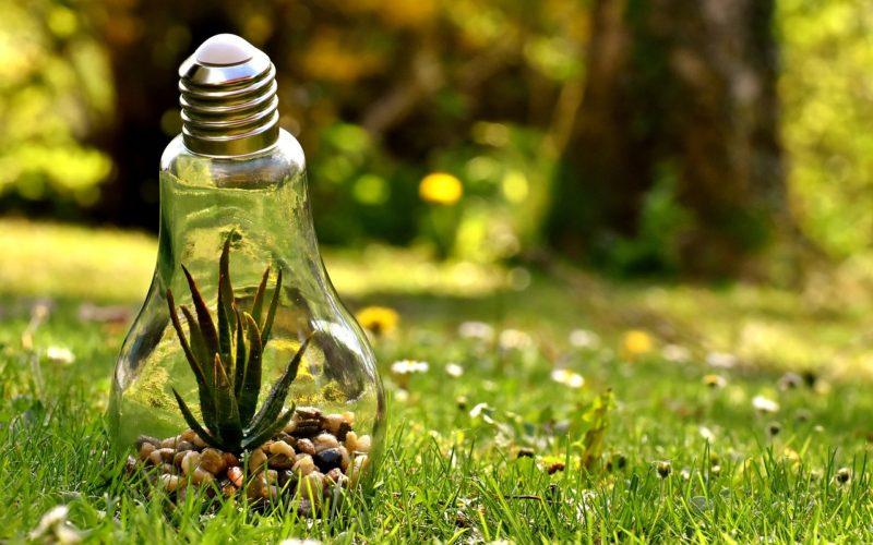 Smart Grid: el próximo paso en energía inteligente