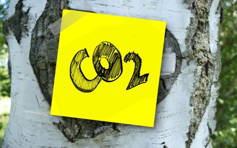 Dramático, las emisiones de CO2 alcanzarán este año un nuevo máximo ante a pesar del COVID-19
