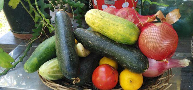 Al 86% de los españoles les gustaría consumir más productos ecológicos