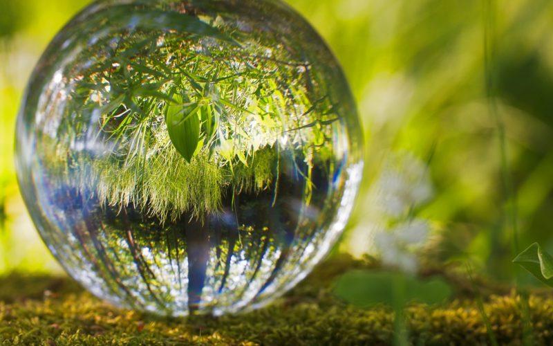 Cuidar el planeta a través de la RS, México, EU y Canadá; se unen para lograrlo