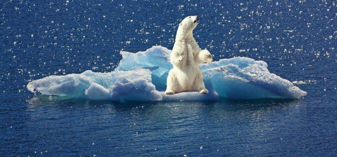Argentina anuncia ante la ONU la preparación de una Ley sobre Cambio Climático