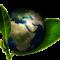 """Responsabilidad social y ambiental: el nuevo """"chip"""" generacional"""