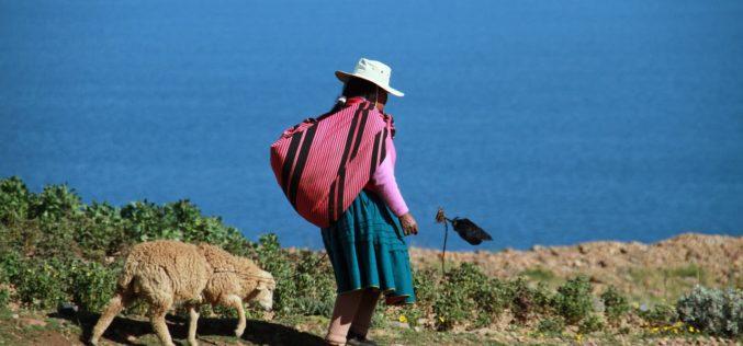 Dos casos empresarios que abordan el derecho a la tierra en América Latina