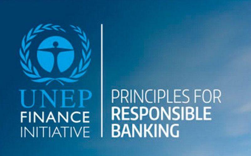Consulta pública sobre los Principios para la Banca Responsable