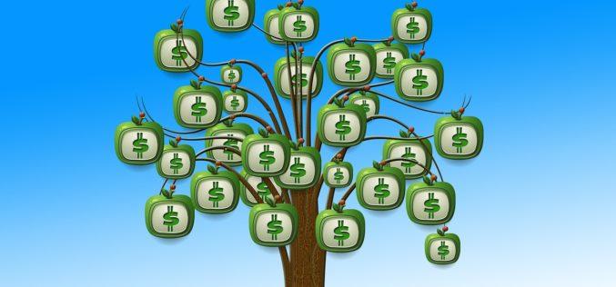Banco Fassil apuesta por convertirse en el primer banco verde de Bolivia con apoyo de IFC