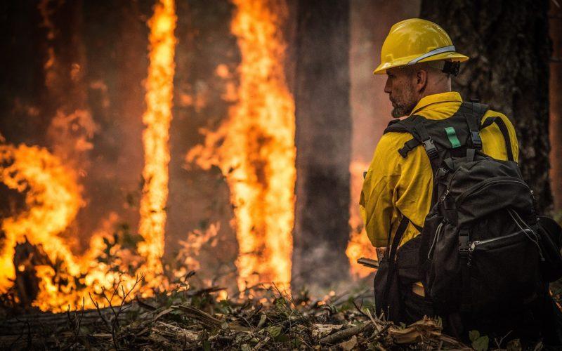 Incendios por cambio climático: estas regiones también están en llamas