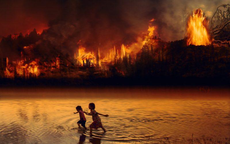 Naciones Unidas sobre los incendios forestales en el Amazonas