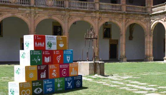 ¿Cómo pueden las universidades contribuir con los ODS?
