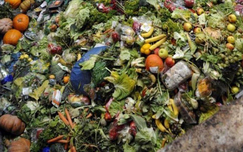 ¿Quiénes son los culpables del desperdicio de alimentos?