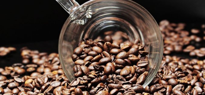 ¿Quién debe certificar la sustentabilidad del café?