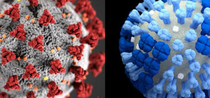 ¿Qué diferencias hay entre gripe común y coronavirus?