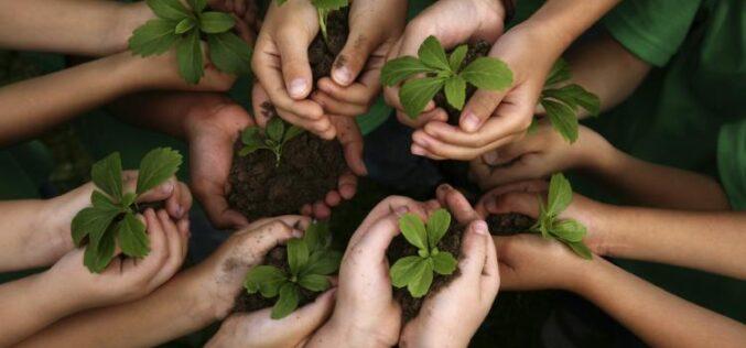 Proyecto chileno ganador del Premio a la Educación para el Desarrollo Sostenible en la primera infancia