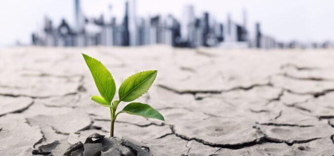 Índice Desempeño del Cambio Climático