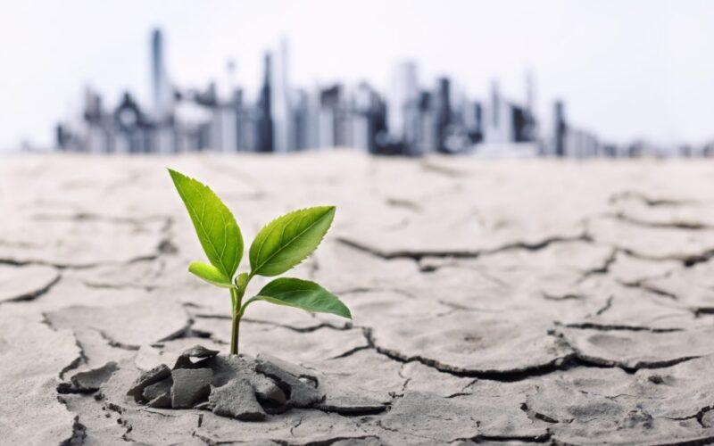 Publican manual de justicia climática para las empresas