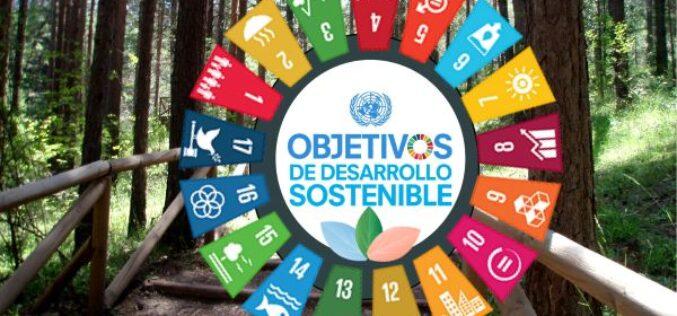 ¿Han contribuido las empresas públicas a la consecución de los ODS durante 2020?
