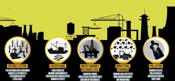 El mundo debe reducir a la mitad la huella ambiental de los modelos de producción y consumo