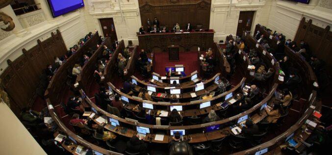 Ecología en la Constitución: «El medioambiente no puede ser un bien de consumo para Chile»
