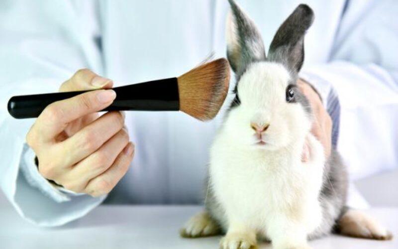 Unilever fomenta la producción de cosméticos sin crueldad en Europa